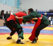 В Йошкар-Олу съехались 300 сильнейших борцов мира