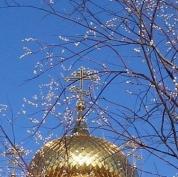 Православные Марий Эл отмечают светлый праздник - день Входа Господня в Иерусалим