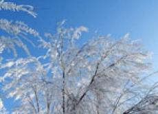 Морозы в Приволжье, которые продержатся до конца февраля, станут самыми длительными за зимний сезон 2006-2007 годов