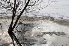 Дмитрию Медведеву доложили о готовности Марий Эл к паводку