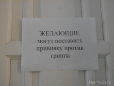 Все йошкаролинцы могут привиться российской вакциной от гриппа бесплатно
